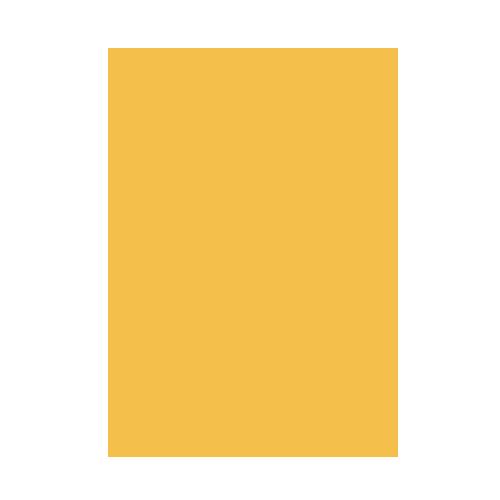 SGD4D